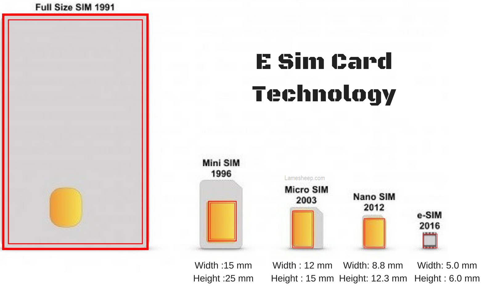 Iphone  Come With Sim Card