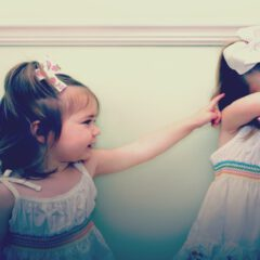 Sibling rivalry and interpersonal conflict in child rearing